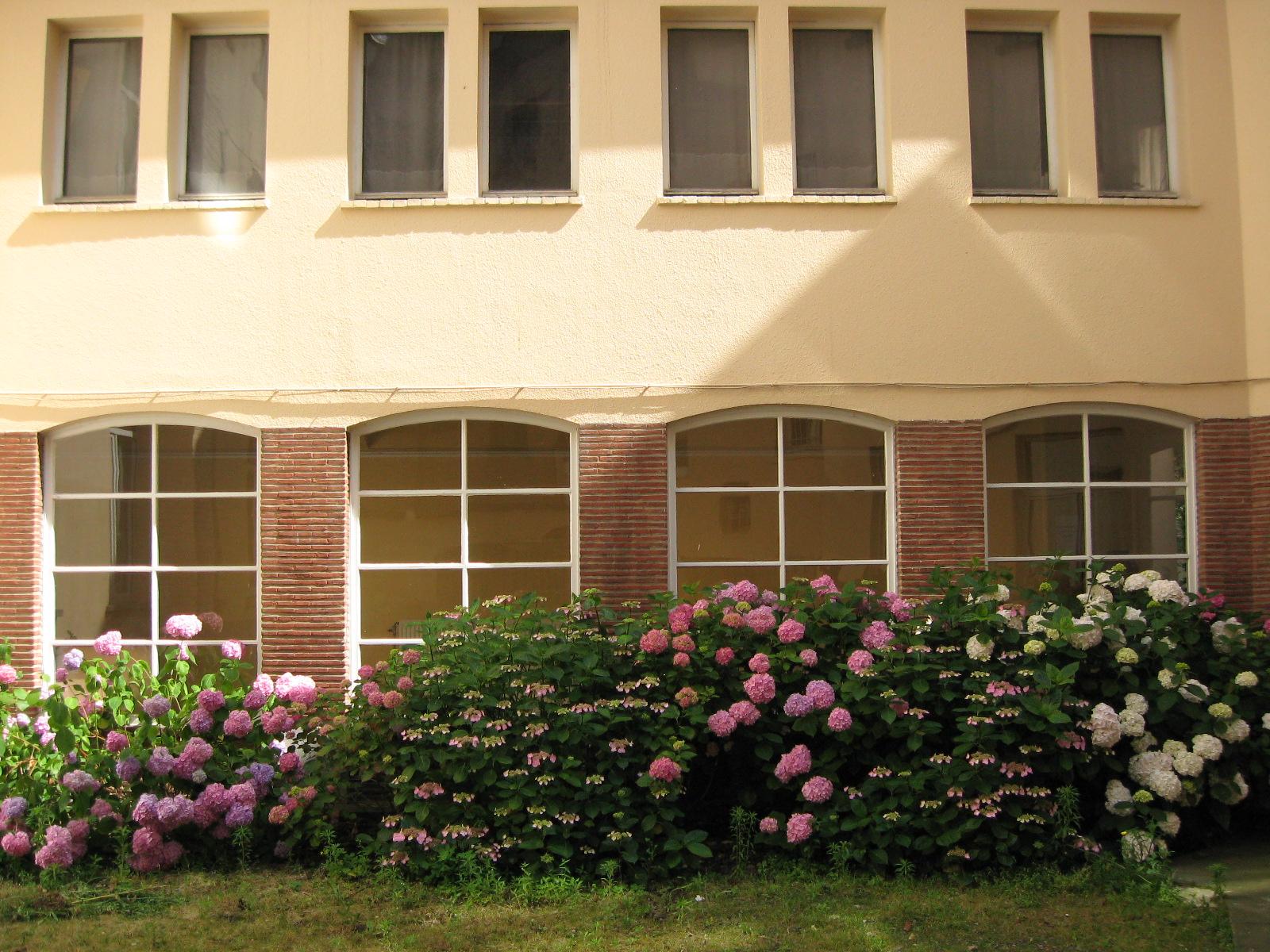 Vues de la maison africaine for Jardin interieur maison